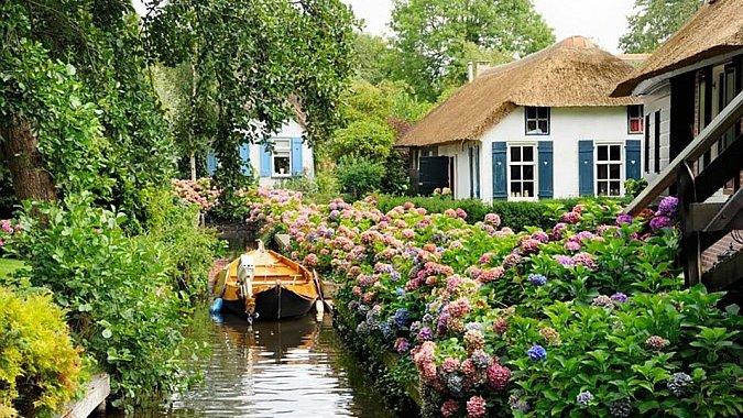 Голландия защищает свои тюльпаны от туристов