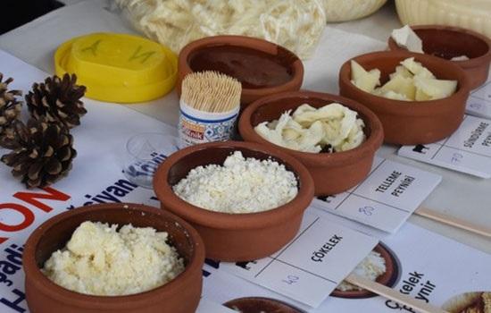 3-й Международный фестиваль сыра стартовал в турецком курортном городе Бодрум