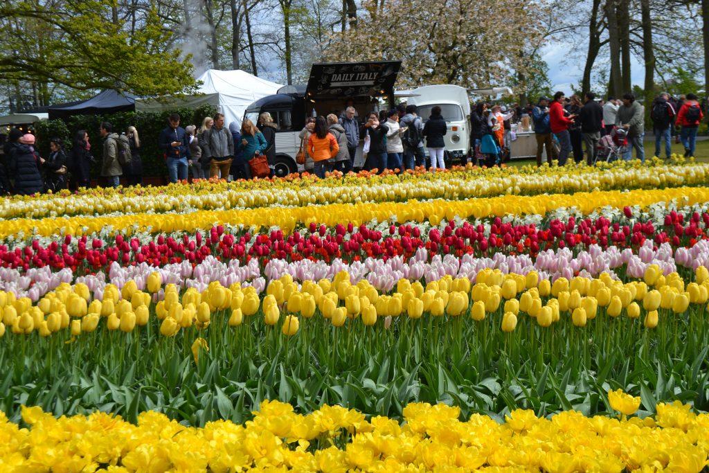 Нидерланды восстают против чрезмерного туризма